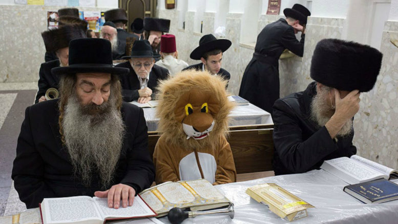 Purim lion costume praying
